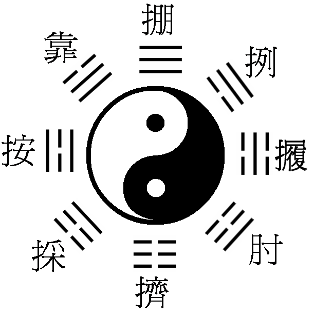Super Tai Chi Chuan - Wind River Tai Chi Chuan IC48